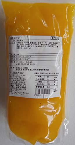 国産 宮崎県産 金柑 ゼリー 1kg×10P 冷凍 業務用
