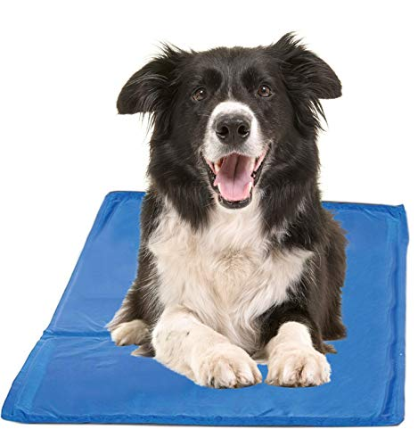 Chillz Cooling Mat For Dogs, Large Size Cool Pad – Pressure Activated Gel Dog Cooling Mat – No Electricity or Refrigeration Required – Keep Your Pet Cool This Summer – 36 x 20 Inches Review