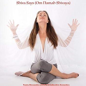 Shiva Says (Om Namah Shivaya)