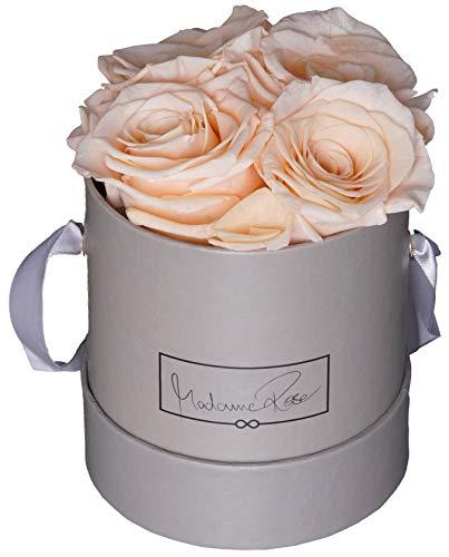 MadameRose Rosenbox rund mit 4 konservierten Champagner Rosen in Grauer Hutschachtel als Geschenk und Deko, Größe M