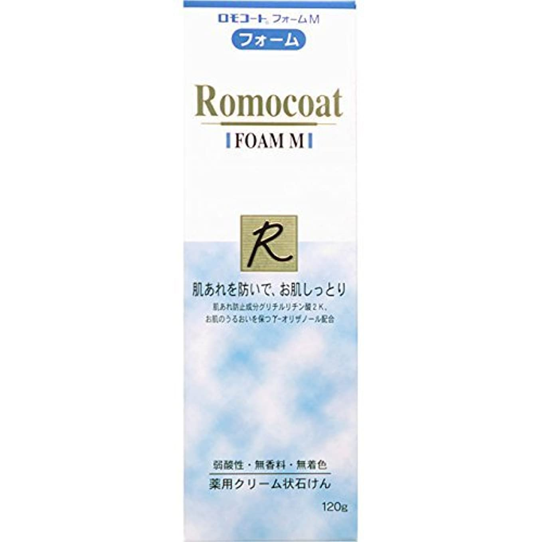 ロードされた森林保存【2個】ロモコートフォームM 120gx2個 (4987305032621-2)