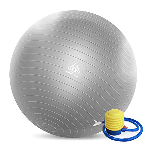 Forbidden Road Exercise Yoga Ball (4 Sizes, 4 Colors) 200 lbs Anti-Burst Slip-Resistant Yoga Balance Stability Swiss Ball for Fitness Exercise with Free Air Pump (Silver, Diameter: 50-55cm)