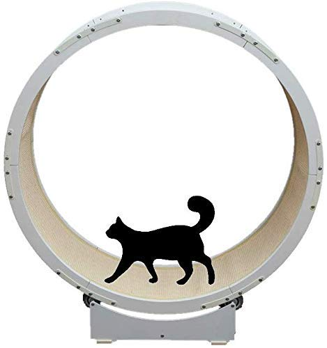 DAYUMAOJIN Árbol de Gato, Gato Grande Marco de Escalada 1.2m de diámetro Cinta de Correr de Metal Juguete para Gato Rueda Grande y Redonda Mascota Corriendo Árbol de Gato Blanco