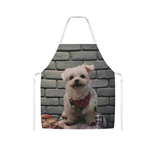 Doinh Kurzmantel Beige Hund Beside Grau Wandwolltuch Schürze für Damen und Herren beim Kochen, Grillen und Backen