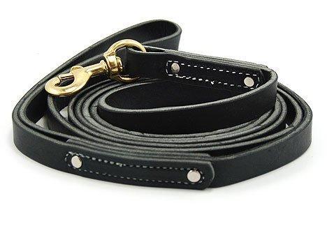 Leerburg Amish Leather Leash, 10' Long 3/4