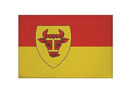 U24 Aufnäher Coesfeld Flagge Aufbügler Patch 9 x 6 cm