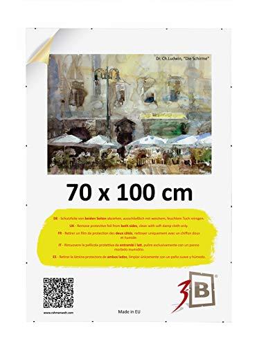 3B Clip Frame - 70x100 cm (ca. 27,5x39,5