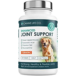 N.A. Dog Joint Supplements, 120 Chewable Tablets – Enhanced With Turmeric For Dogs, Glucosamine For Dogs & Green Lipped Mussel   Joint Aid For Dogs   Dog Joint Care   Made In The UK By Canine Life Co