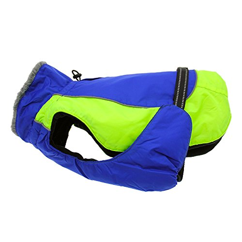 Doggie Design Alpine All Weather Dog Sport Parka Coat - Cobalt Blue and Iridescent Green Size M