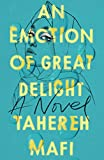 An Emotion Of Great Delight: New heartbreaking romance for 2021 from the New York Times bestselling author of the Shatter Me series and A Very Large Expanse of Sea