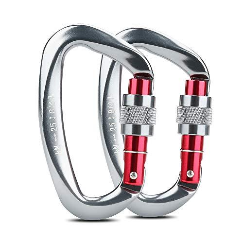 welltop Karabiner, Kletterkarabiner Karabinerhaken aus Aluminium Schlüsselanhänger 25 KN-Karabinerhaken für hohe Beanspruchung mit Schraubsicherung zum Klettern, Abseilen, Hängematten (Grau)