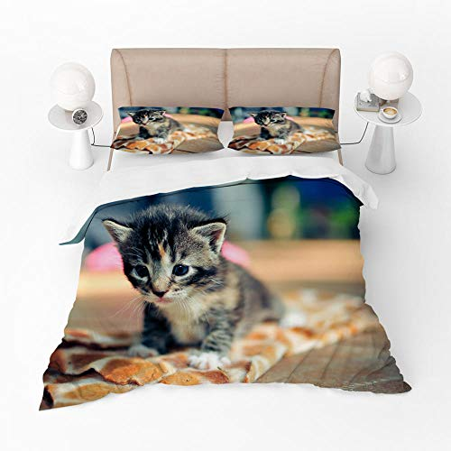 Duvet Cover Set King-Zipper Closure with 2 Pillow covers Bedding Set Ultra Soft Hypoallergenic Microfiber Quilt Cover Sets Cute cat