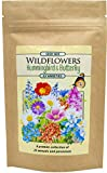 Created by Nature - Hummingbird & Butterfly Wildflower Seed Mix - A Premier Collection of 23 Annuals and Perennials - Over 60,000 Seeds