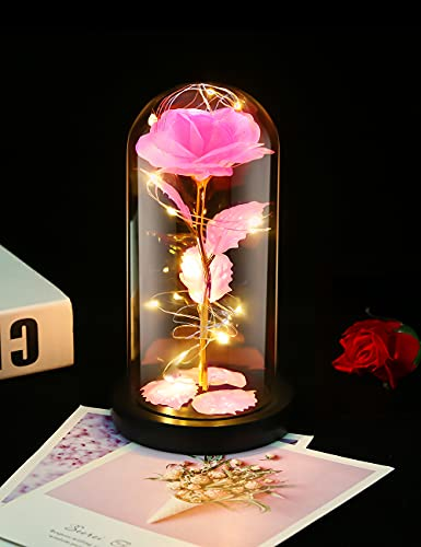 Gomyhom Rosa Eterna, Rosa Bella y Bestia, Galaxy Rosa, luz LED en Vidrio, Regalos Originales para Día de San Valentín, el Día de Madre, Mujer Novia Esposa, Cumpleaños Regalo (Rosa)