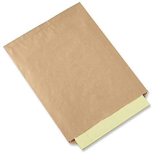 10x13 - 100 Count - Flat Brown Kraft Paper Bags by Flexicore Packaging