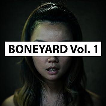 Boneyard, Vol. 1