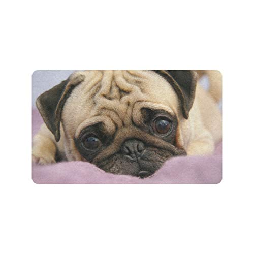 Cute Pug Dog Puppy Snout Eyes 30x18 pulgadas Alfombra para exteriores Antideslizante Puerta delantera trasera Entrada Alfombrillas de interior Alfombrillas lavables Perfil Claustro Alfombra interior