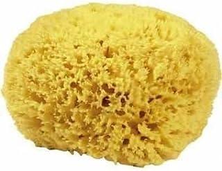 CROLL & DENECKE M090 - Esponja Natural del mar Mediterráneo (Calidad Media, 9 cm)