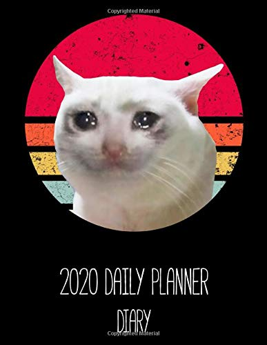 2020 Diary Journal Daily Planner Sad Crying Cat: Daily Diary with Lined and Dated Pages and Yearly Calendar, 380 pages