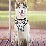 BABYLTRL Silver Big Dog Harness No-Pull Anti-Tear Adjustable Pet Harness...