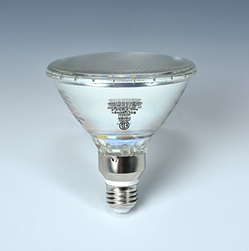BGLighting All Glass 90W Equivalent Soft White PAR38/BR38/FL105 13W Dimmable LED Flood Light Bulb