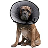 Dog Cone Collar for After Surgery, Soft Pet Recovery Collar for Dogs & Cats, Comfort Cone Collar Protective Collar for Large Medium Small Dogs, with Interior Made of Comfortable Plush Material - XL