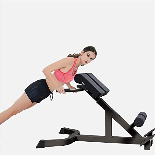 Bench Roman Chair Back Hyperextension/ Hyper Back Extension, Roman Chair, Adjustable Ab Sit up Bench, Decline Bench, Flat Bench Foldable Crunches Abdominal Muscles Fitness Equipment (Grey)