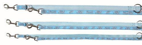 Laisse réglable Modern Art Sportdog, XS–S: 2,00 m/15 mm, bleu clair/bleu, pour chien