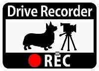 [CraftBunny] ドライブレコーダー搭載ステッカー「コーギーとビデオカメラ」 (マグネット) s48
