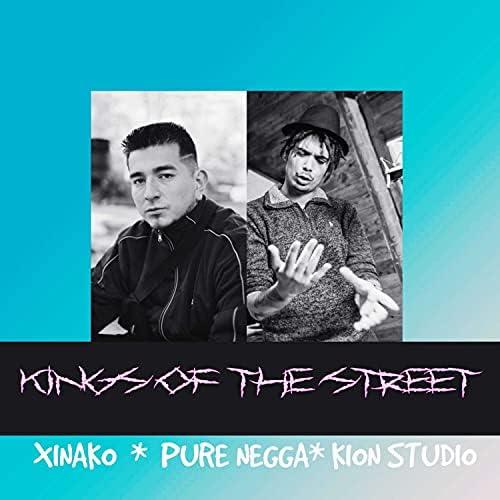 Xinako, Pure Negga & Kion Studio