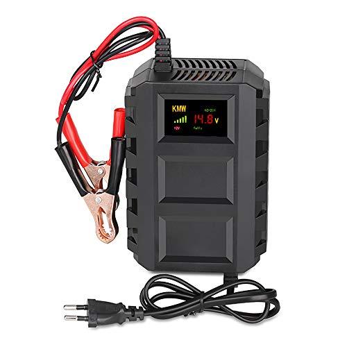 Enjoygoeu Carica Batteria Mantenitore, 12V 20A Multi Proictezioni Caricatore Intelligente Automato Caricabatterie Manutentore per Auto, Moto, ATV, Camper, Powers Ports (Nero)