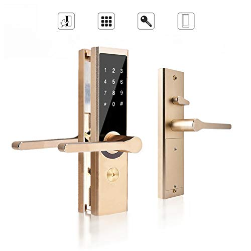 Serratura Smart, Serratura Elettronica Intelligente, WiFi BT Cipher Remote Smart Door...