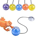 vomvomp 5 Pack Reptile Toy Balls with Suction Cups and Ropes to Provide Exercise and Entertainment for Bearded Dragon Lizard and Gecko