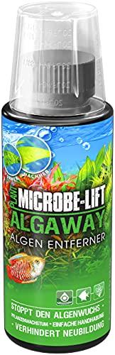 ARKA Aquatics Algaway Algenentferner - beseitigt schnell & effektiv Algen in jedem Süßwasseraquarium & verhindert deren Neubildung, 118 ml