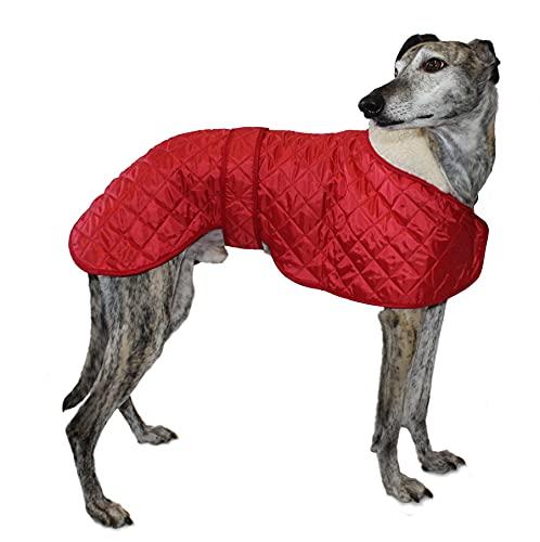 Cosipet Greyhound Anorak - Abrigo de Nailon (71 cm), Color Rojo