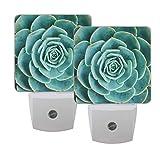 Gokruati 1 Pcs Lámpara de luz nocturna enchufable,luces nocturnas LED blancas,luz nocturna brillante con sensor de anochecer a abajo para la cocina del dormitorio(planta suculenta de cactus)