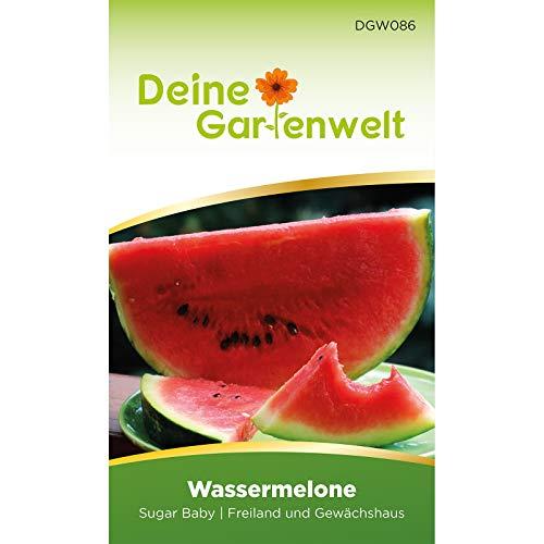 Wassermelonen Sugar Baby Samen  ...