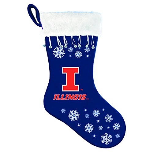 Boelter Brands NCAA Illinois Illini Stocking Snowflake