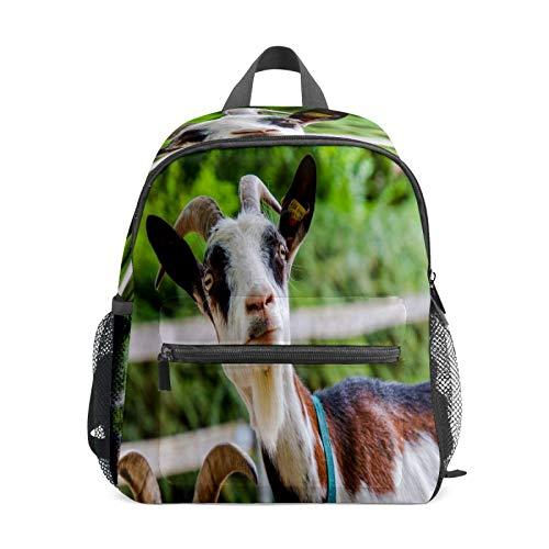 Mochila infantil para niños de 1 a 6 años de edad, mochila perfecta para niños pequeños a niños de cabra, cuernos de animales, ovejas naturales