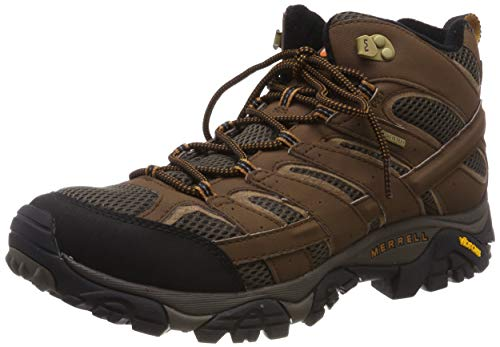 Merrell Men's Moab 2 Mid Gtx Hiking Boot, Earth, 9 M US