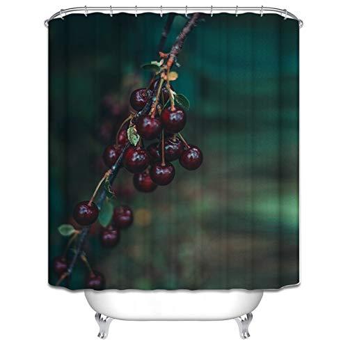 DOLOVE Badewannenvorhang Antischimmel Kirsche Blätter Duschvorhang 3D 180x180 Duschvorhang Bunt Antischimmel
