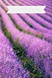 Stress Anxiety Lavender Field Journal Custom Title