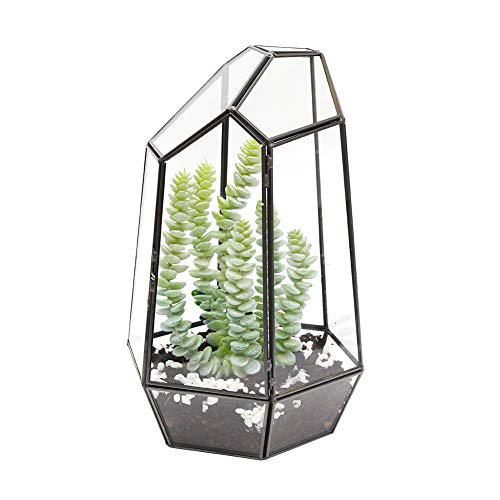 The Fellie Glas Blumentöpfe, Geometrischer Glasblumentopf für Kupfer, handgefertig als Blumentopf für Miniatur-Bonsai, Blumentopf für Sukkulenten, Keine Pflanzen