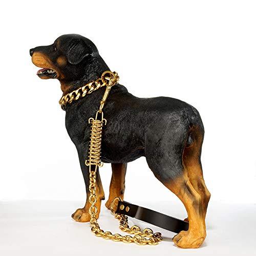 WELBLQ Hundeleinen Edelstahl O-Wort Hundekette Anti-Biss-Federpuffer Große Hundeleine-Gold