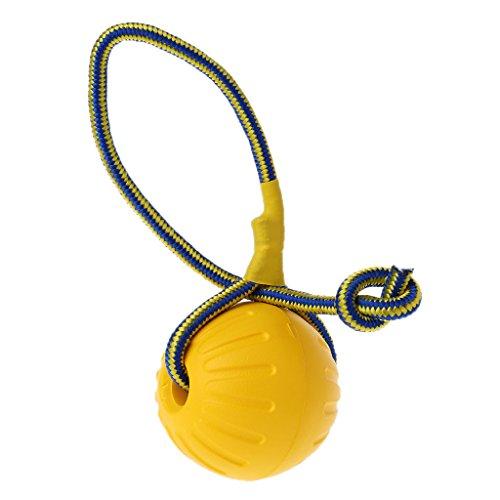 Mentin - Juguete de adiestramiento para perro de compañía, pelota de goma, pelota de perro, juguete resistente a mordeduras, juguete con cuerda de 75 cm (grande 9 cm)