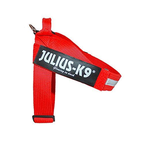 Julius-K9 IDC Innova Dog Comfort Red Belt Harness size 3