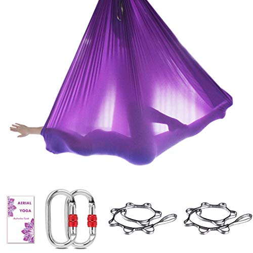 TESLANG Aerial Yoga Swing, Aerial Silks Yoga Hammock, Antigravity Yoga Swing Set with 2 Extension Straps Daisy Chains & O-Ring, Flying Yoga Trapeze, 5M x 2.8M
