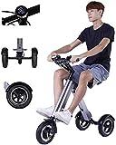 LAZNG Adulto Scooter eléctrico, 36V 250W eléctrica plegable triciclo, bicicleta eléctrica for hombres y mujeres, ancianos coche eléctrico, 30-45KM duración de la batería, 150KG cojinete, carga 4h, 130