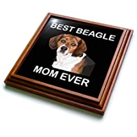 3dRose Sven Herkenrath Dog - Funny Beagle Dog Portrait with Best Beagle Mom Ever - 五徳 8x8 Trivet with 6x6 ceramic tile ブラウン trv_294707_1