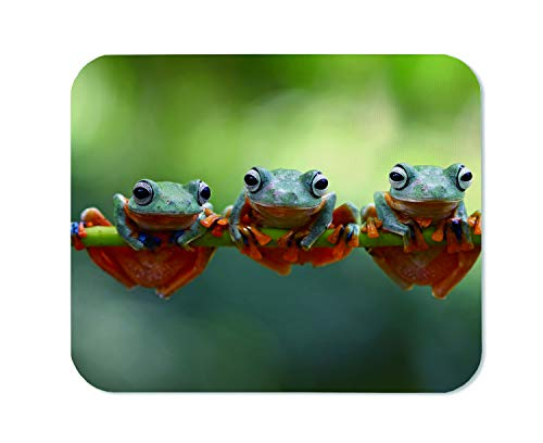 Yeuss Tree Toad Mouse Pad Rectangular Non-Slip Mousepad, Java Tree Frog Flying Frog On Branch Gaming Mouse Pads, Yellow Gray Green,200mm x 240mm